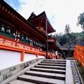 神に願う-奈良県奈良市:春日大社