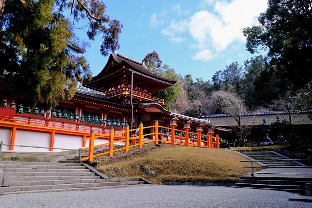 神や仏がいるのなら-奈良県奈良市:春日大社