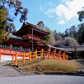 Photos: 神や仏がいるのなら-奈良県奈良市:春日大社