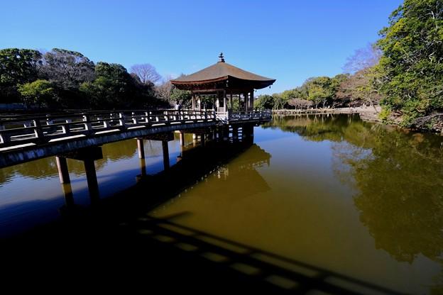 Photos: 静かな佇まい-奈良県奈良市:浮見堂
