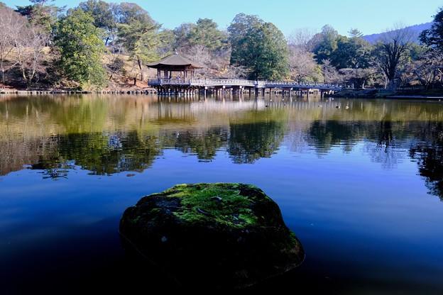 Photos: 好きなアングル-奈良県奈良市:浮見堂