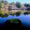 好きなアングル-奈良県奈良市:浮見堂