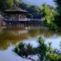 真面目な奈良県人-奈良県奈良市:浮見堂