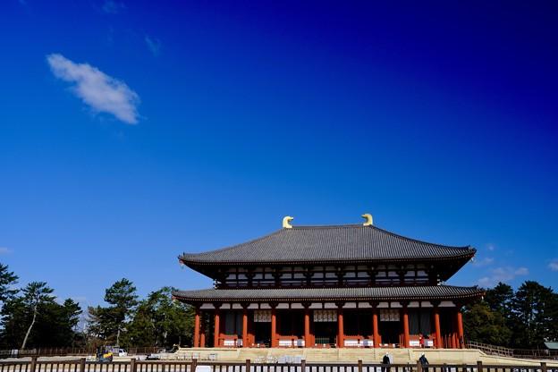 Photos: 青く染まる-奈良県奈良市:興福寺中金堂