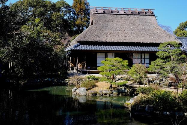 静寂の庭園-奈良県奈良市:依水園