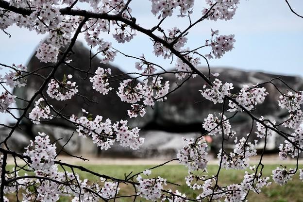 小学校の思い出-奈良県明日香村:石舞台古墳