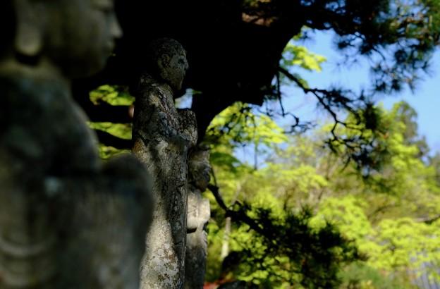 仏にすがる-大阪府河内長野市:延命寺