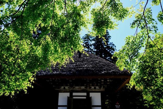 楠木正成ゆかりの建物-大阪府河内長野市:観心寺