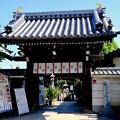 バラを見に-奈良県橿原市:おふさ観音