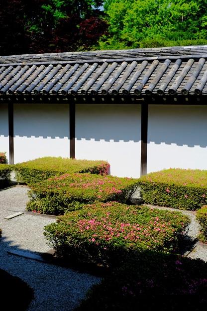 不思議な感覚-京都市東山区:東福寺