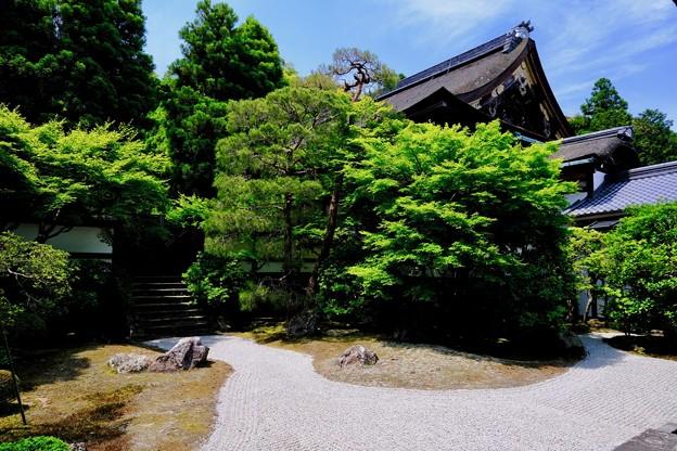 京都に魅せられて-京都市東山区:泉涌寺