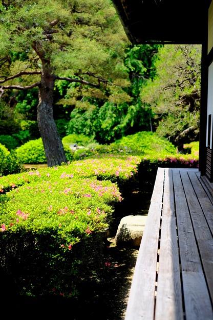 美しき別院へ-京都市東山区:雲龍院