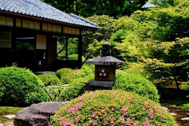 緑に囲まれ-京都市東山区:雲龍院