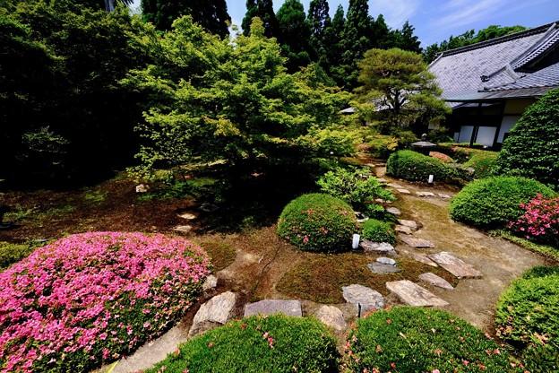 広角レンズの楽しさ-京都市東山区:雲龍院