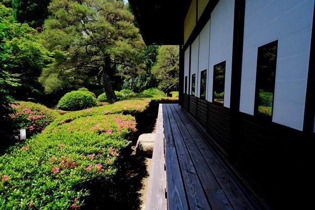 縁側に座りて-京都市東山区:雲龍院