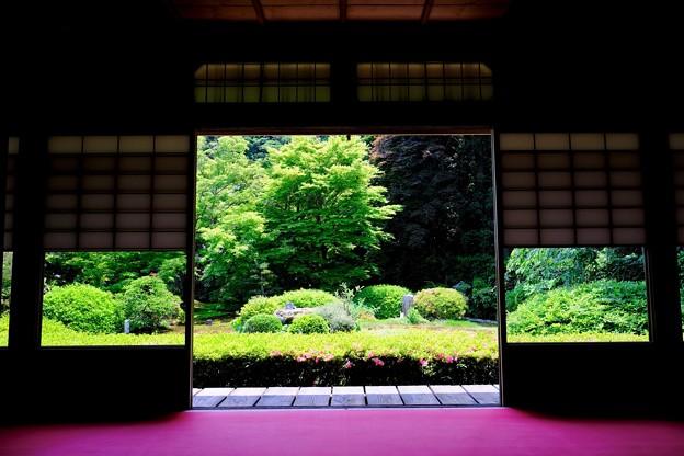 大輪の間-京都市東山区:雲龍院