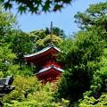 Photos: 朱塗りの多宝塔-京都市東山区:今熊野観音寺