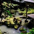 Photos: 貴賓室からの眺め-京都府長岡京市:楊谷寺
