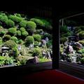 Photos: 書院から眺める浄土苑-京都府長岡京市:楊谷寺