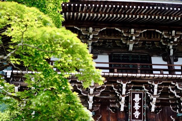 山門-京都市西京区:善峯寺