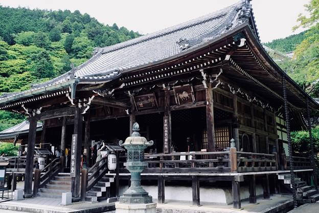 桂昌院ゆかりのお寺-京都市西京区:善峯寺