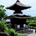 Photos: 多宝塔-京都市西京区:善峯寺