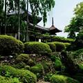 Photos: いい一日でした-京都市西京区:善峯寺