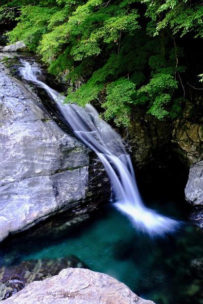 豊かな水-奈良県天川村:みたらい渓谷