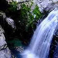 滝と渓谷-奈良県天川村:みたらい渓谷