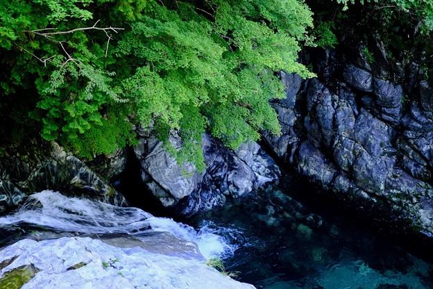 美しい水-奈良県天川村:みたらい渓谷