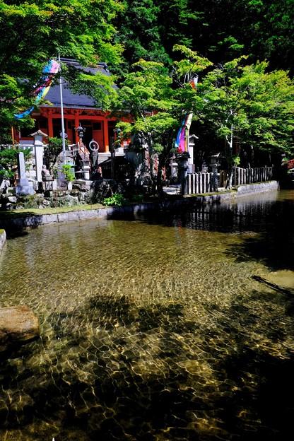 清めの水-奈良県天川村:龍泉寺