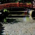 澄みきった水-奈良県天川村:龍泉寺