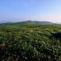 いつもとは違う夏-長野県諏訪市:霧ヶ峰