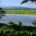 Photos: 恋人の聖地-長野県諏訪市:八島ヶ原湿原