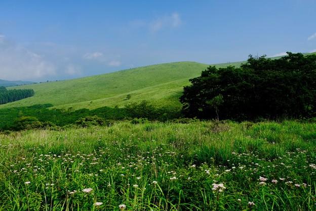 青空-長野県諏訪市:霧ヶ峰