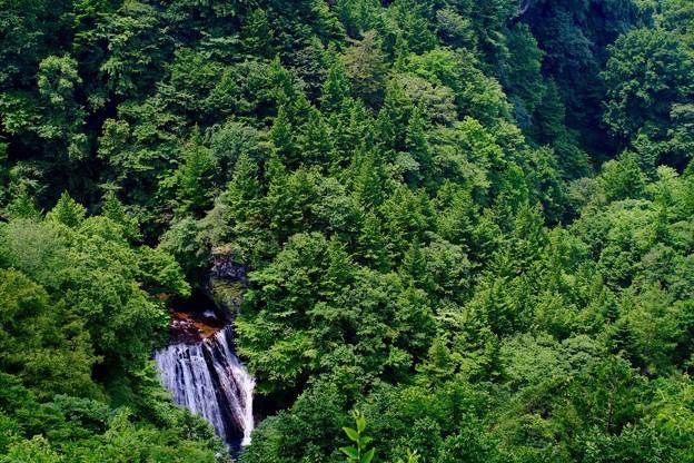 滝を楽しみに渓谷へ-長野県茅野市:横谷渓谷