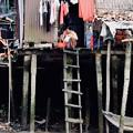 Photos: 濁った川-Cai Be, Viet Nam