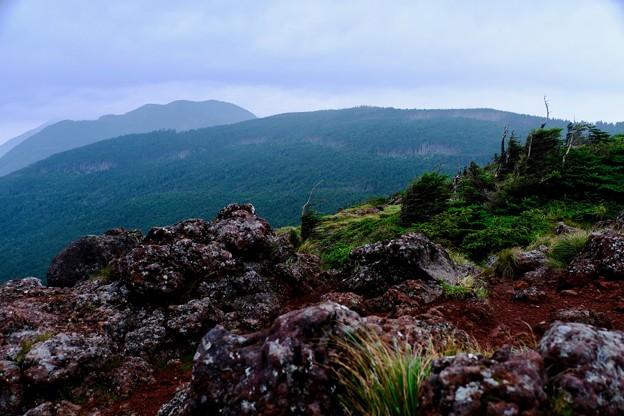 頂にて-長野県茅野市:北八ヶ岳