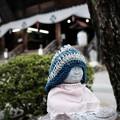Photos: 一度詣れよ…-長野県飯田市:元善光寺