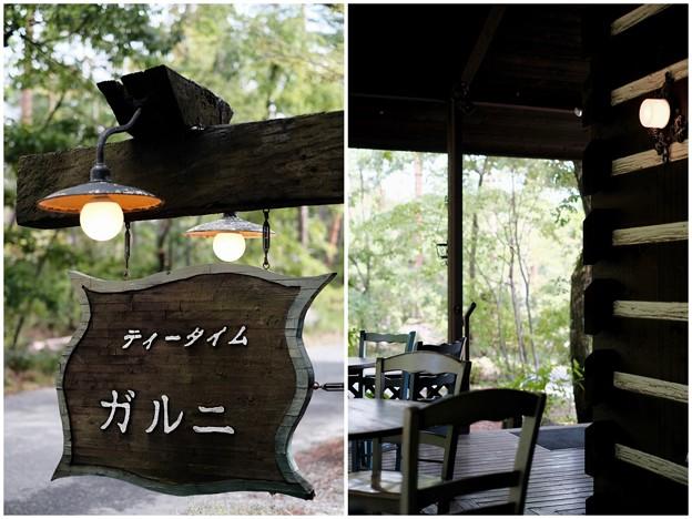 森の中のカフェ-長野県安曇野市:「ティータイム ガルニ」