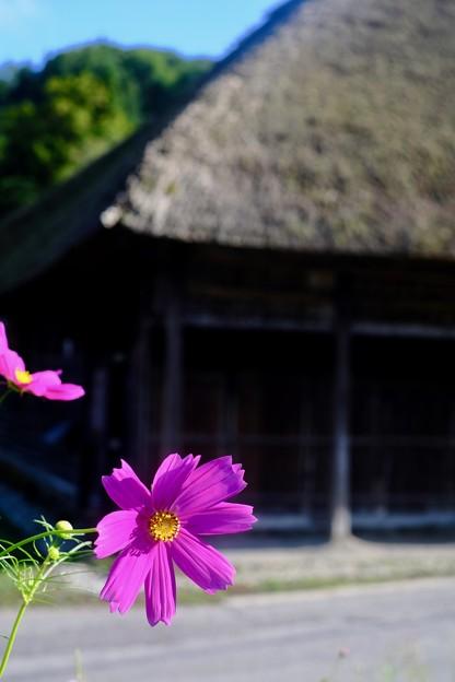 一足早い秋-長野県小谷村