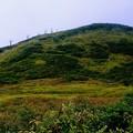 Photos: 山の上は雲の中-長野県白馬村:八方尾根