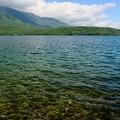 Photos: 静かに佇む湖-長野県大町市:青木湖