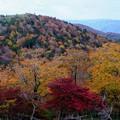 Photos: 絢爛豪華な秋-奈良県上北山村:大台ヶ原山