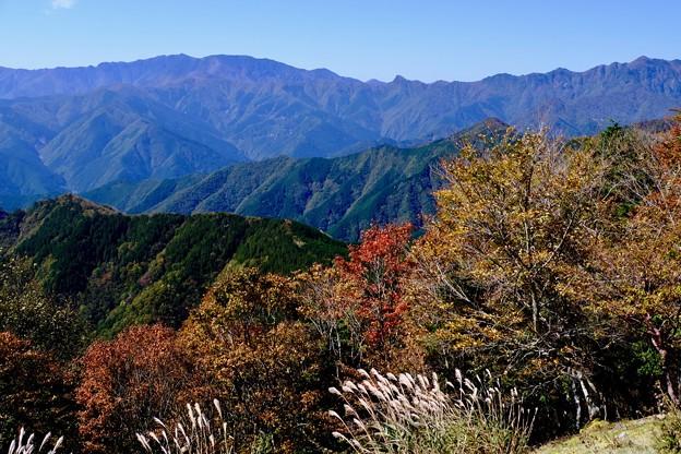 近畿の屋根-奈良県上北山村:大台ヶ原山