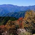 Photos: 近畿の屋根-奈良県上北山村:大台ヶ原山