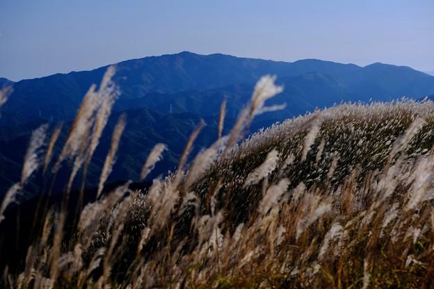 嬉しい晴天-大阪府河内長野市:岩湧山
