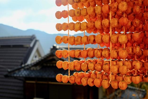 串柿の里-和歌山県かつらぎ町:四郷