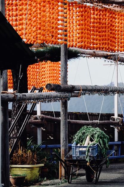 日本の秋-和歌山県かつらぎ町:四郷