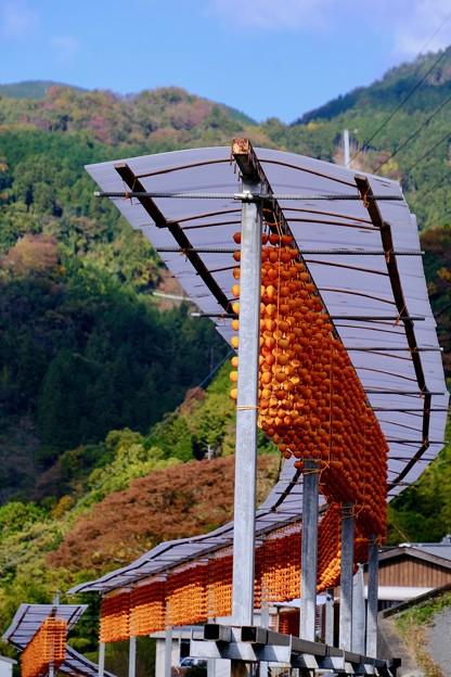 橙色-和歌山県かつらぎ町:四郷